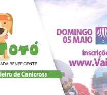 Pet  Torres vai ter a primeira CÃOminhada Evento inédito é organizado pela Vai Totó