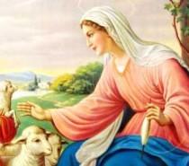 Reflexão: A mãe de Jesus