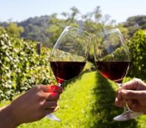 Dia do Vinho 2018 chega com mais de 300 atrações simultâneas espalhadas por três regiões do Brasil