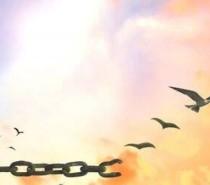 Reflexão: A bênção do perdão