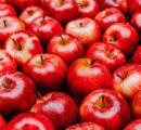 Confira alimentos que ajudam a turbinar a memória