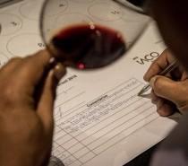 8ª Grande Prova Vinhos do Brasil premiará vencedores na Wine South America