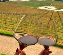 Serra Gaúcha: Prova dos Dez propõe degustação de dez vinhos dos Altos Montes