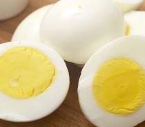 Comer ovos todos os dias, ajuda a ganhar músculos e perder gordura corporal