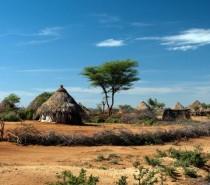 CIÊNCIA Por que tão poucos casos de coronavírus foram relatados na África?
