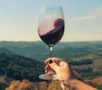 Economia / Venda de vinhos e espumantes cresce 19% no Brasil no acumulado de 12 meses