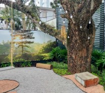 Giardino del Bosco convida a comunidade caxiense a registrar os novos tempos do bairro Exposição